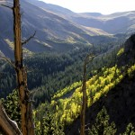 Beautiful mountain cabin rentals, Colorado